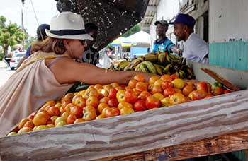 Market-Day-in-Barbados